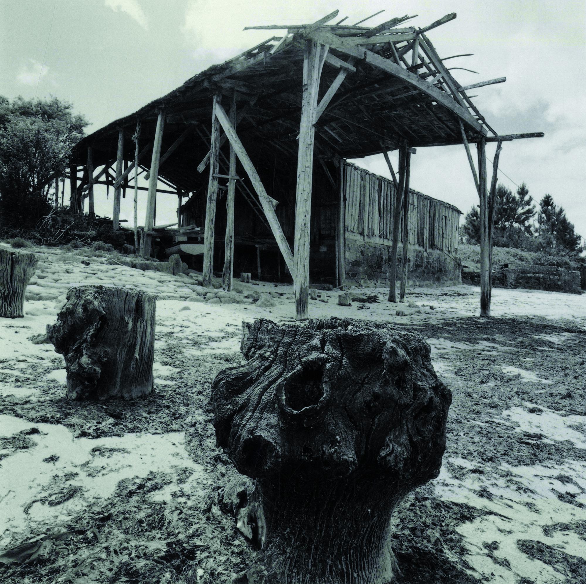 Carpintería de ribera de O Charango. Estudio de usos y plan de mejora.